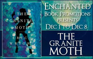 the-granite-moth-banner