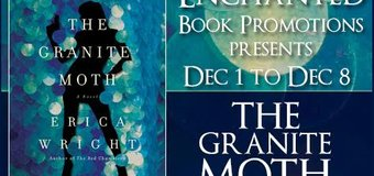 Book Excerpt // The Granite Moth by Erica Wright