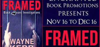 Author Interview // Framed by Wayne Kerr