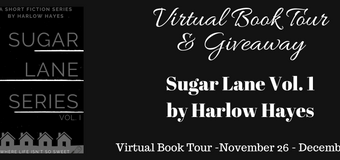 Book Excerpt // Sugar Lane Series Vol. 1 by Harlow Hayes